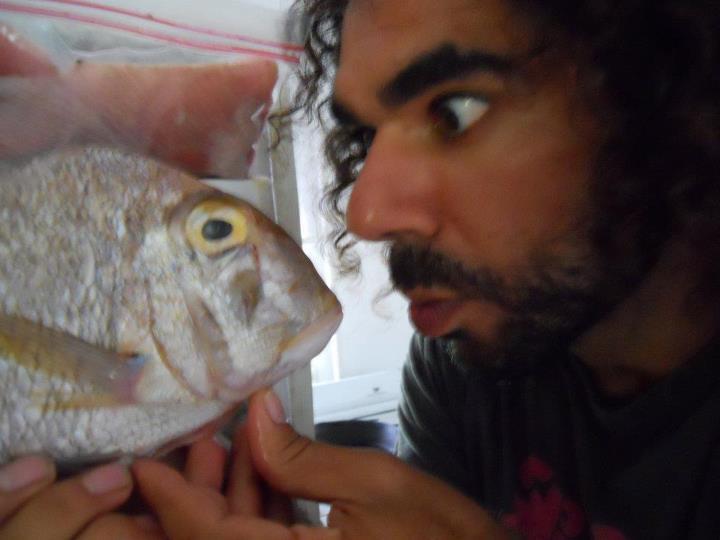 fish faceoff